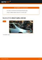 Schimbare Bujie aprindere FIAT PUNTO: online ghidul