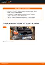 Le raccomandazioni dei meccanici delle auto sulla sostituzione di Testina dello Sterzo TOYOTA Toyota Aygo ab1 1.4 HDi