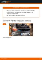 Manuell PDF för AYGO underhåll