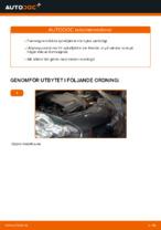 Steg-för-steg-guide i PDF om att byta Fjädrar i TOYOTA AYGO (WNB1_, KGB1_)