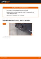DIY-manual för byte av Spiralfjädrar i TOYOTA AYGO (WNB1_, KGB1_)