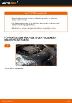 Wie Federbein TOYOTA AYGO tauschen und einstellen: PDF-Tutorial