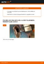 Benzinfilter Benzin + Diesel austauschen: Online-Anleitung für VW GOLF