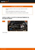 Cómo cambiar y ajustar Filtro de Aceite : guía gratuita pdf