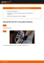 När byta Styrekugle VW GOLF IV (1J1): pdf handledning