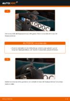 Cómo cambiar las escobillas traseras de limpiaparabrisas en VOLKSWAGEN PASSAT B5 (3BG, 3B6)