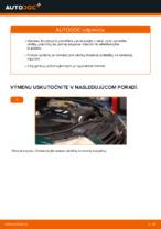 Vymeniť Brzdové doštičky VW PASSAT: zadarmo pdf
