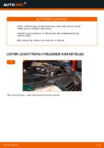 Hvordan man udskifter bremseklodser til skivebremer i bag på VOLKSWAGEN PASSAT B5 (3BG, 3B6)