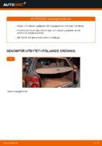 När byta Gasfjäder bakruta VW PASSAT Variant (3B6): pdf handledning