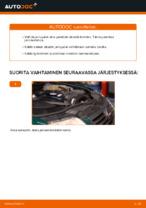 Opas PDF ladata
