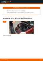 Laga Tändkassett: pdf instruktioner för VW POLO