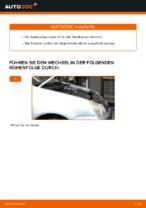 Wann Zündkerzensatz austauschen: PDF Anleitung für VW POLO (9N_)