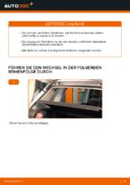 Wie der Austausch von Gasfedern des Kofferraumdeckels bei VOLKSWAGEN POLO IV (9N_) -Autos funktioniert