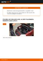 VEMO V24-70-0019 für POLO (9N_) | PDF Handbuch zum Wechsel