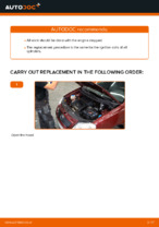 Auto mechanic's recommendations on replacing VW Polo 9n 1.2 12V Shock Absorber