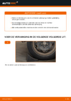 Handleiding PDF over onderhoud van POLO