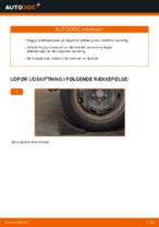 Montering af Støddæmper VW POLO (9N_) - trin-for-trin vejledning