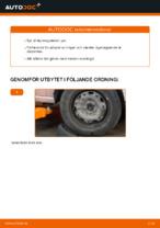 Bilmekanikers rekommendationer om att byta VW Polo 9n 1.2 12V Multirem