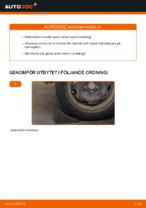 Byta Fjäderben VW POLO: gratis pdf