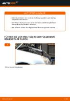 Austauschen von Fahrwerksfedern Anweisung PDF für VW POLO