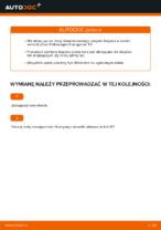 Jak wymienić i wyregulować Łożysko piasty VW TRANSPORTER: poradnik pdf