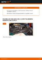 Ersetzen von Dreieckslenker VW PASSAT: PDF kostenlos