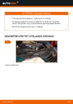 Hur man byter ut ett fjäderben fram på VOLKSWAGEN PASSAT B5 (3BG, 3B6)