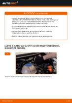 PDF manual sobre mantenimiento TRANSPORTER