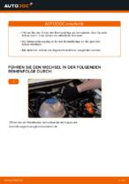 PDF-Tutorial zur Wartung für TRANSPORTER