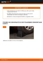 PDF-Tutorial zur Wartung für PASSAT