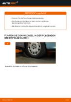 Wie der Austausch von Spurstangenköpfen bei FIAT PUNTO II (188)-Autos funktioniert