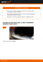 Wie der Austausch von Gasfedern des Kofferraumdeckels bei FIAT PUNTO II (188) -Autos funktioniert