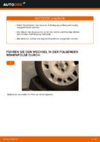 Wie Sie die hinteren Fahrwerksfedern am FIAT PUNTO II (188) ersetzen