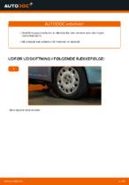 Skifte Bærearm bag og foran FIAT PUNTO: guider online