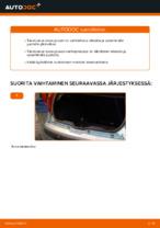 Milloin vaihtaa Takaluukun kaasuiskunvaimennin FIAT PUNTO (188): käsikirja pdf