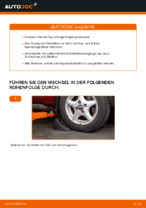 Wie Spurstangengelenk wechseln und einstellen: kostenloser PDF-Leitfaden