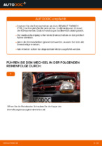 hinten und vorne Bremsscheiben RENAULT TWINGO I (C06_) | PDF Wechsel Tutorial