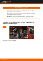 OPTIMAL AG-17596 für TWINGO I (C06_) | PDF Handbuch zum Wechsel