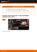 Auswechseln Zündkerzensatz RENAULT TWINGO: PDF kostenlos
