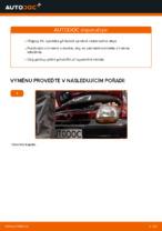 Výměna Olejovy filtr RENAULT TWINGO: online průvodce
