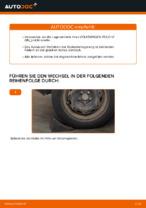 Einbau von Radlagersatz beim VW POLO (9N_) - Schritt für Schritt Anweisung