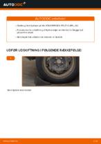 Vejledning VW online