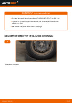 bak och fram Hjullager VW GOLF | PDF instruktioner för utbyte