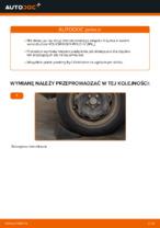 Jak zmienić Łożysko zestaw naprawczy piasty VW POLO: darmowy pdf