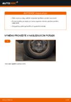 Vyměnit Odpruzeni VW POLO: dílenská příručka