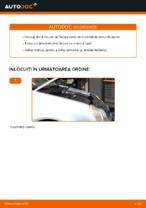 Recomandările mecanicului auto cu privire la înlocuirea VW Polo 9n 1.2 12V Amortizor Portbagaj