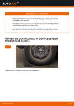Schraubenfeder vorne links rechts auswechseln: Online-Handbuch für VW POLO