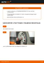 Bytte Hjullagersett bak og foran VW gjør-det-selv - manualer pdf på nett