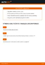 Manuálna PDF na údržbu PASSAT