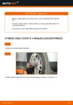 Návod na riešenie problémov VW PASSAT